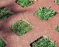 Grasstone